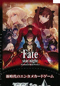 Fate/Stay Night Unlimited Blade Works Vol. 2