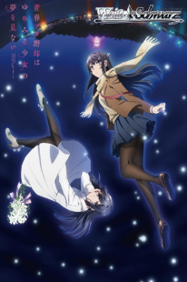 Seishun Buta Yarou wa Yume Miru Shoujo no Yume wo Minai Movie
